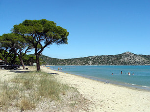 Schinias Beach: sand, shade and shallow water...