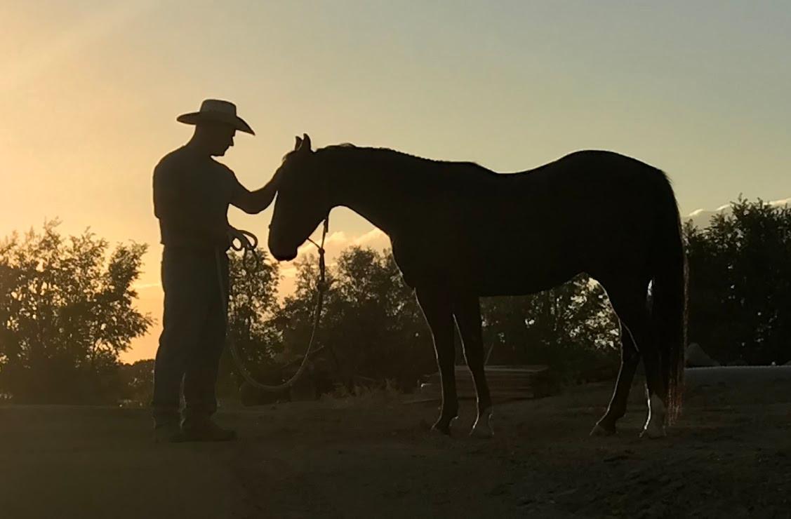 Ron cowboy 2.jpg
