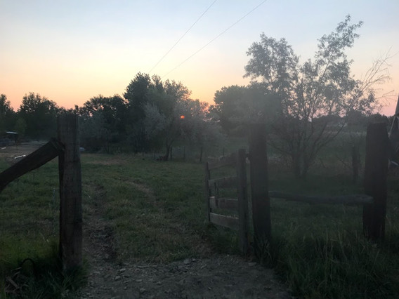 West Pasture.jpg