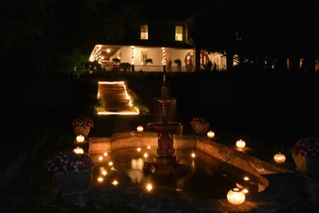 Pond and Lights at night.jpg