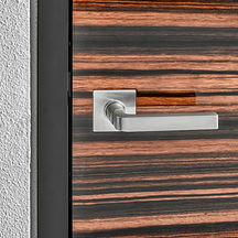 Modern Interior Door With Horizontal Wood Veneer