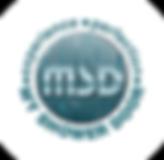MSD2020Logo.png