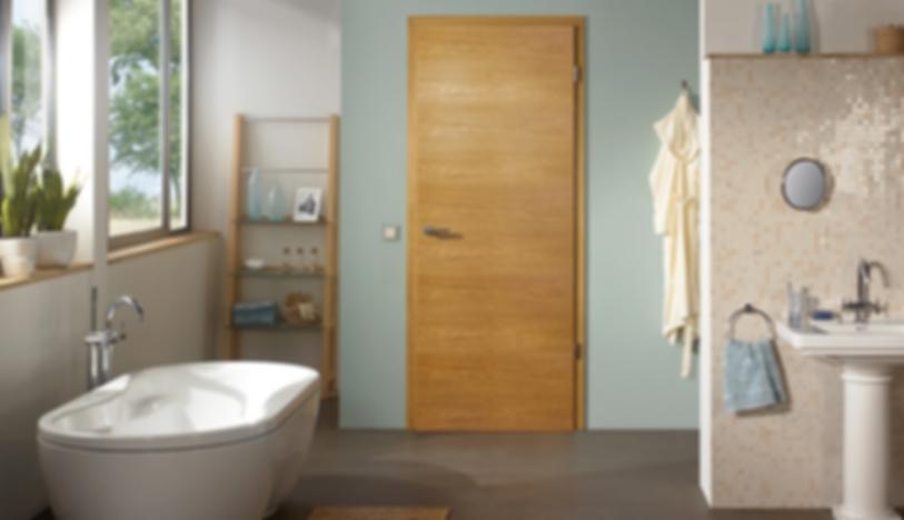 Luxury Bathroom With Modern Interior Doors