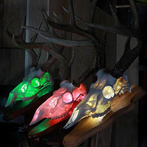 Skull Shine LED Light Kit