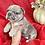 "Thumbnail: Silver Merle female blue eyes "" My sweetheart"""