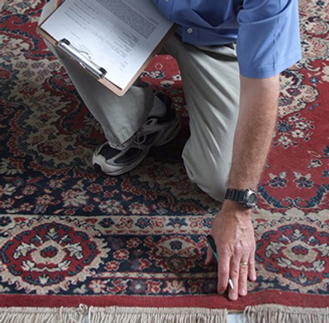 rug inspection1.png