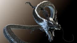 blackdrogon