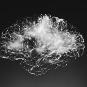 재택근무의 명과 암 : 화상회의와 협업, 당신의 뇌가 위협받고 있다.