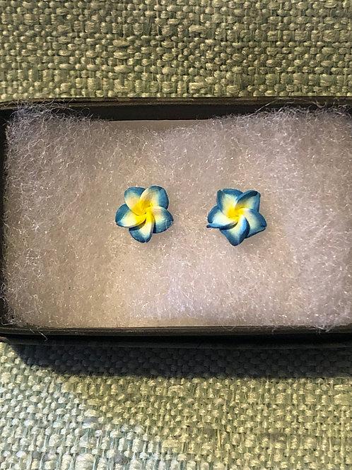 Blue & Yellow Flower Earrings