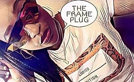 frameplug.jpg