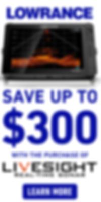 LOW_LiveSight_RebateMay2020_200X400.png
