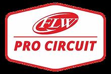 FLW CIRCUIT.png