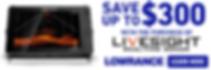 LOW_LiveSight_RebateMay2020_900X300.png
