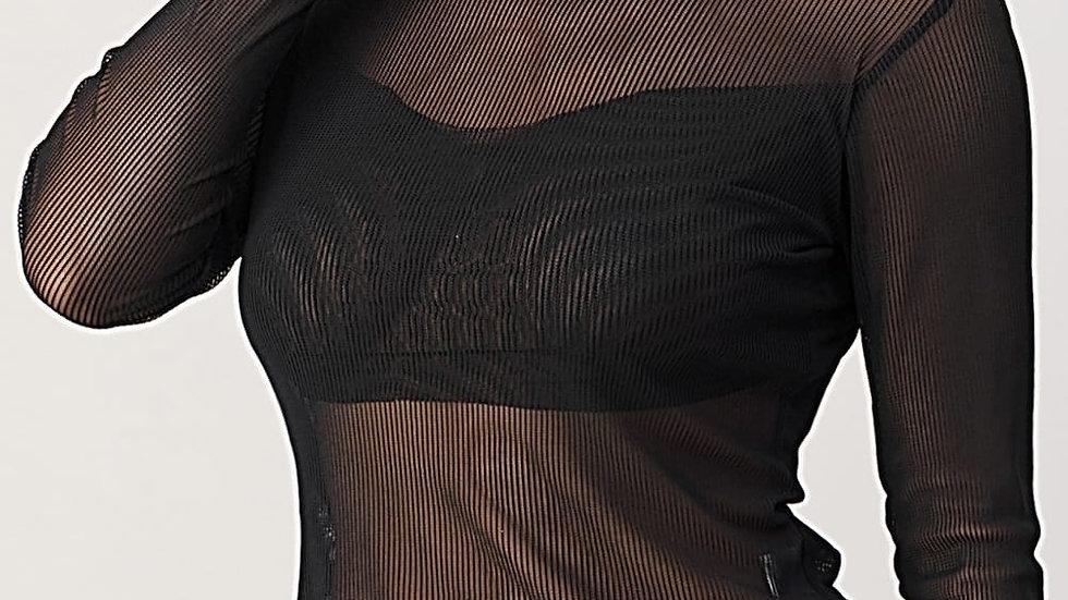 Sexy Lady | SheerTurtleneck