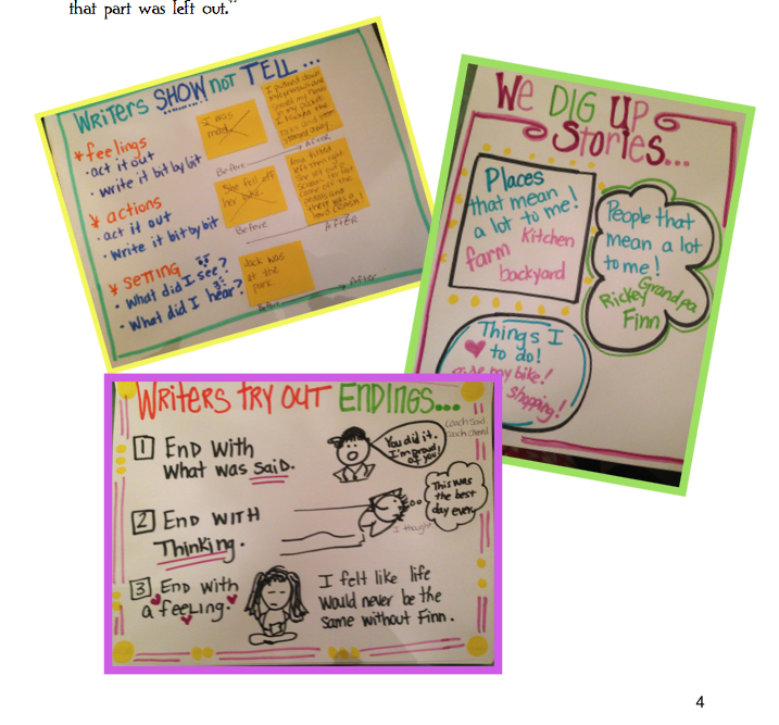 Mini Lesson Anchor Charts Writing