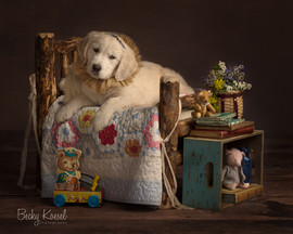 White Dogy