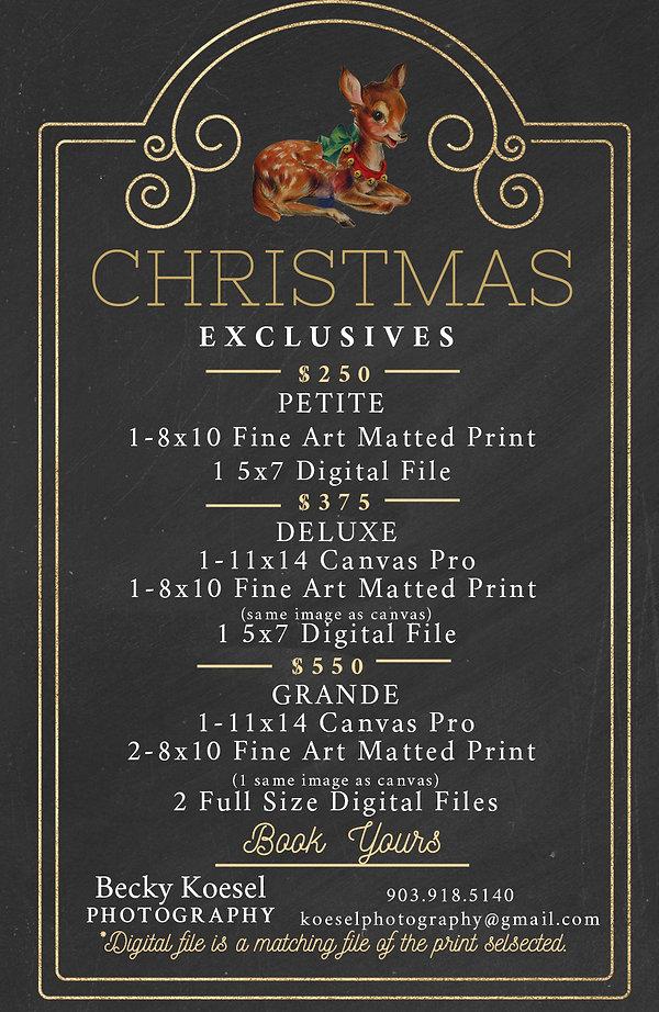 pricing christmas