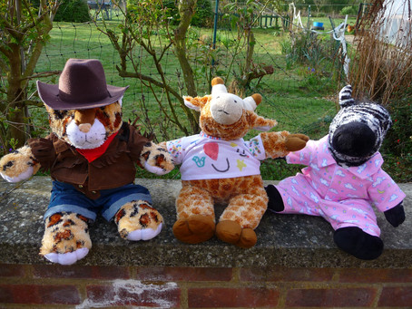 Teddy Bears Picnic Day – 10th July
