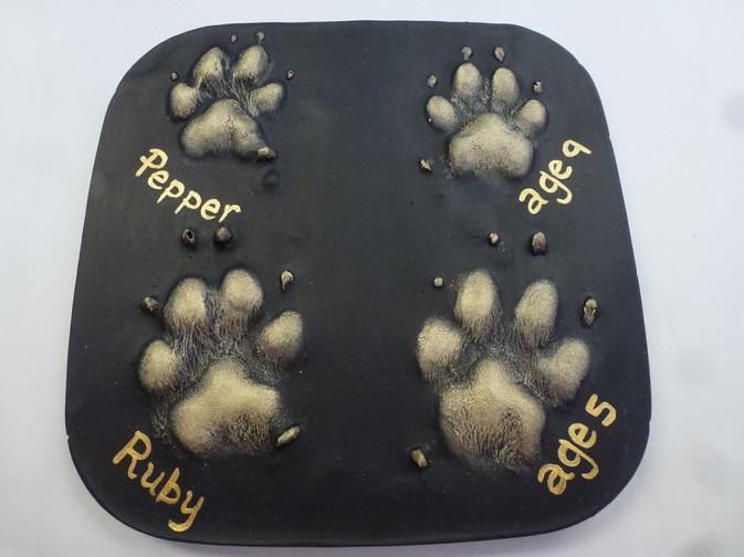 Dog paw print plaster 2D outprints