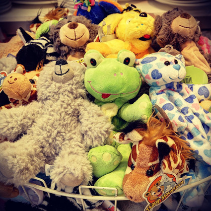 Selection of make your own teddy skins