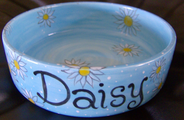 hand painted personalised dog bowl