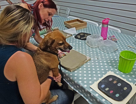 Making plaster outprints with dogs paw print