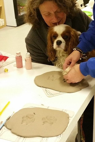 Dog having paw print impressions in clay