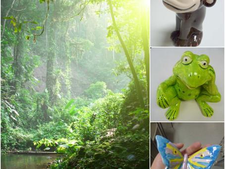 The Rainforest at Crafty Monkey!