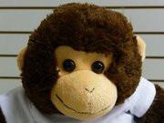 Charlie the Crafty Monkey buildabear
