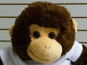 Charlie the Crafty Monkey buildabear