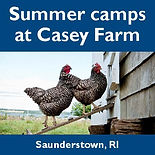 Casey Farm Summer Camps, animals, gardening