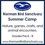 Norman Bird Sanctuary, summer camp, outdoors, nature, hikes, adventure, beach