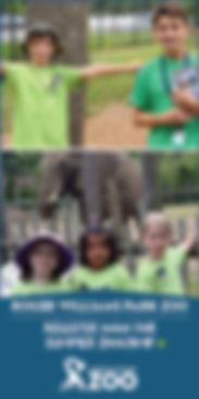 RWPZoo_Summer_ZooCamp_150x300.jpg