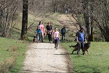 promenade en famille autour du lac