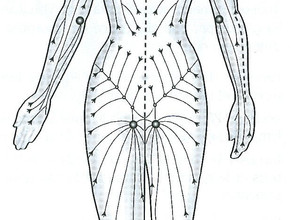 The Shamanic alternative care massage journeys