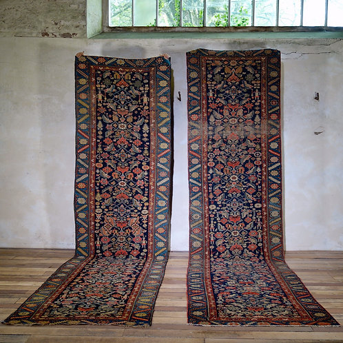 A Near Pair Of Malayer Runners