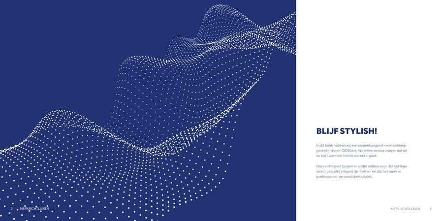 IDDSIdex Brandbook 02.jpg