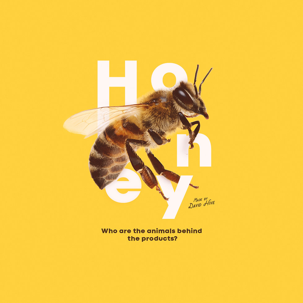 The Animal behind the product - Honey.jp