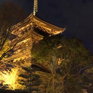 ライトアップされた東寺