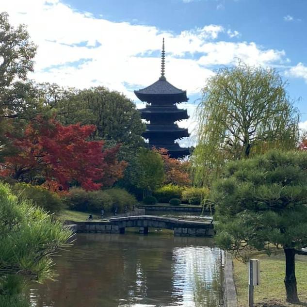 紅葉も美しい東寺さん