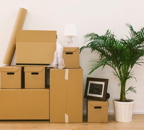 Guia: Onde encontrar caixas para sua mudança