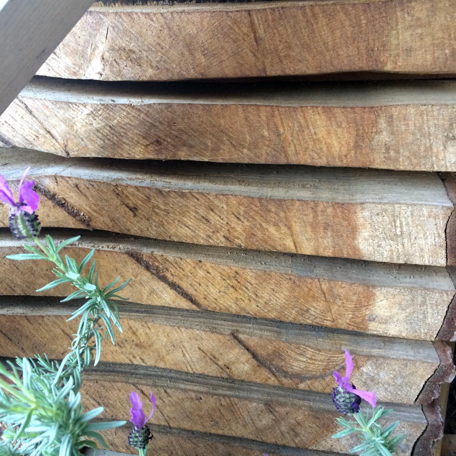 Drying Oak