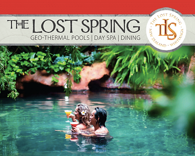 Lost Spring Ad.png