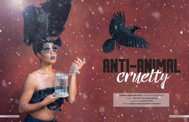 Editorial Magazine Feature - ICON Magazine