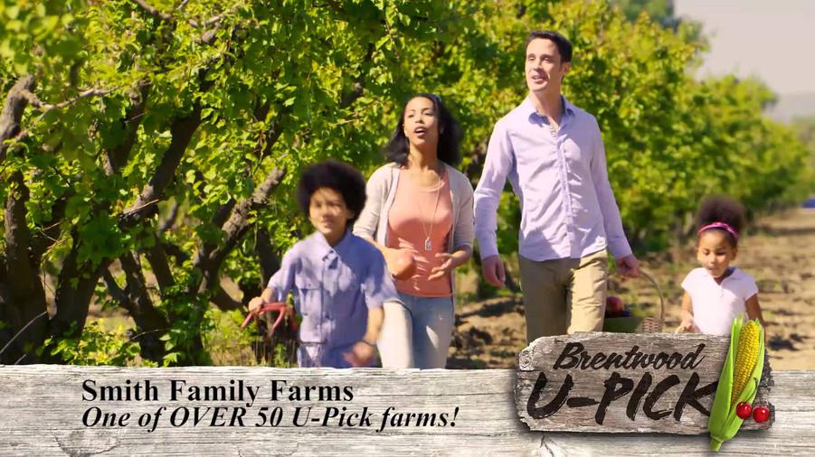 Still shot U-Pick Farms TV Commercial