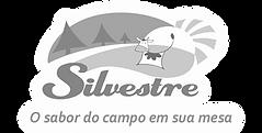 logo-silbranco.png