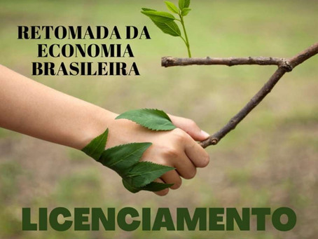 Dados recentes do Instituto Brasileiro de Geografia e Estatística (IBGE) apontam que a pandemia gero