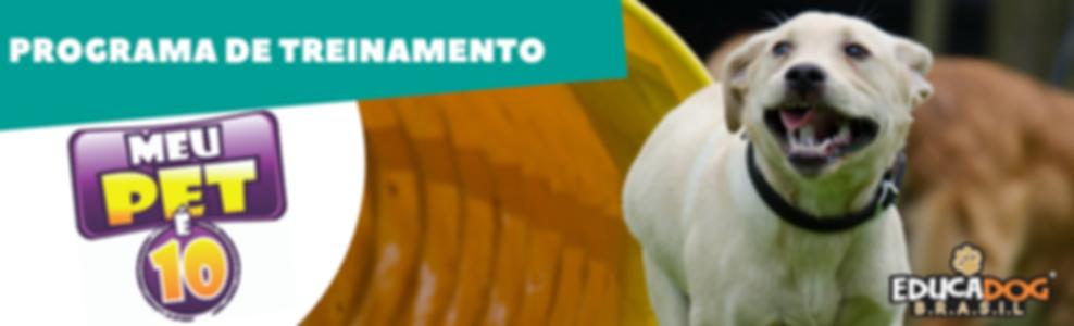 PROGRAMA_DE_TREINAMENTO_MEU_PET_É_10_EDU