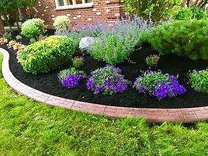 Purple_Perennials.jpg