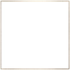 Gold Square Border.png
